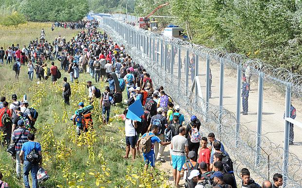 refugee 612b