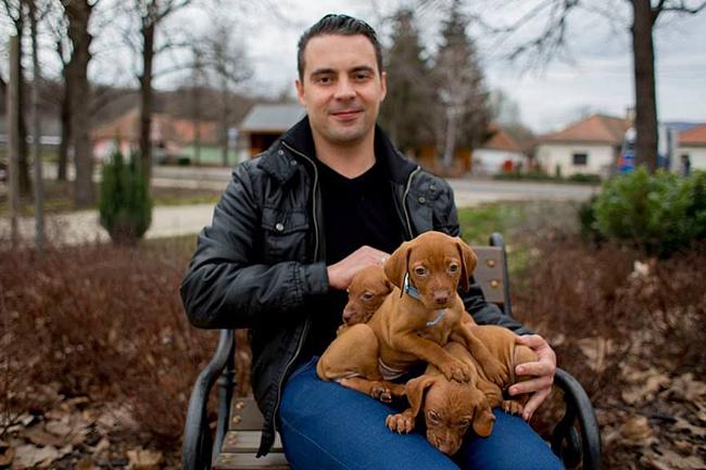 Vona-Gabor-es-a-kutyak