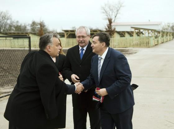 Alcsútdoboz, 2014. november 18. Orbán Viktor miniszterelnök (b), Mészáros Beatrix, a Búzakalász 66 Felcsút Kft. ügyvezetõ igazgatója (takarásban), Fazekas Sándor földmûvelésügyi miniszter (j2) és Mészáros Lõrinc (Fidesz-KDNP) felcsúti polgármester (j) a kft. bányavölgyi mangalicatelepének avatásán a Fejér megyei Alcsútdobozon 2014. november 18-án. MTI Fotó: Koszticsák Szilárd